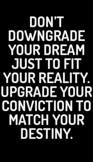 Upgrade Your Shaklee Lifestyle Status Rlei Shaklee Independent Distributor